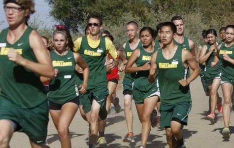 Varsity cross country team welcomes back many returning runners