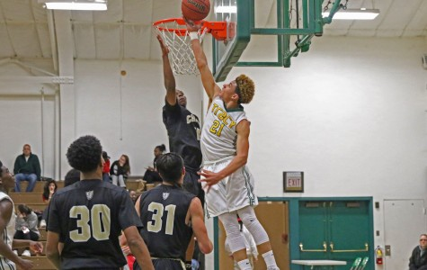 Tracy hoops look to rebound next year