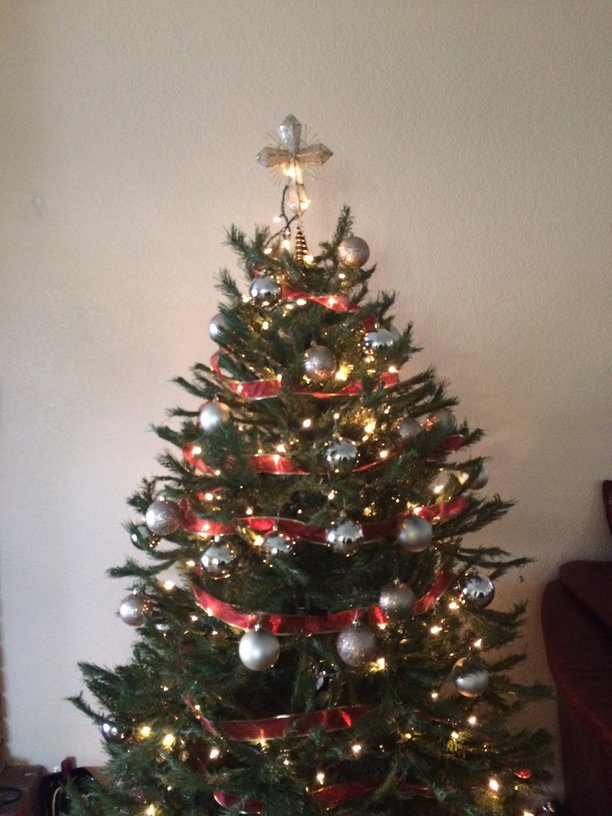 Beautifully+decorated+Christmas+tree+for+the+holidays+