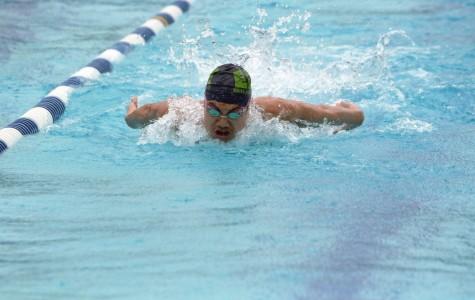 New coaches lead boys' swim squad