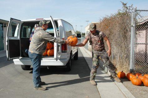 FFA Pumpkin Patch